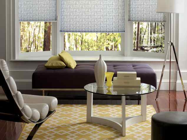 Hunter Douglas Shades The Carpetman